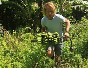 Ikke bananslang - Fra den frie naturen!